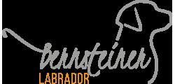 bernsteiner-labrador.at Logo